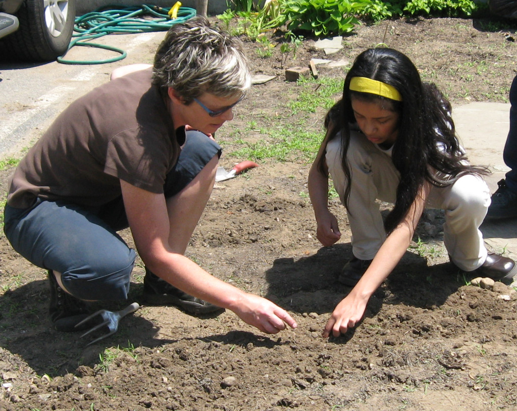 3. spring. planting seeds